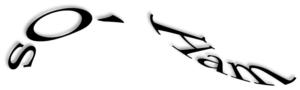 logo_soham_style_2